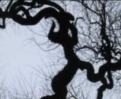MrCantemus - Musik von Lorenz Maierhofer