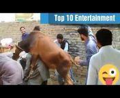 Top 10 Entertainment